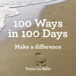 100 Ways in 100 Days Cover
